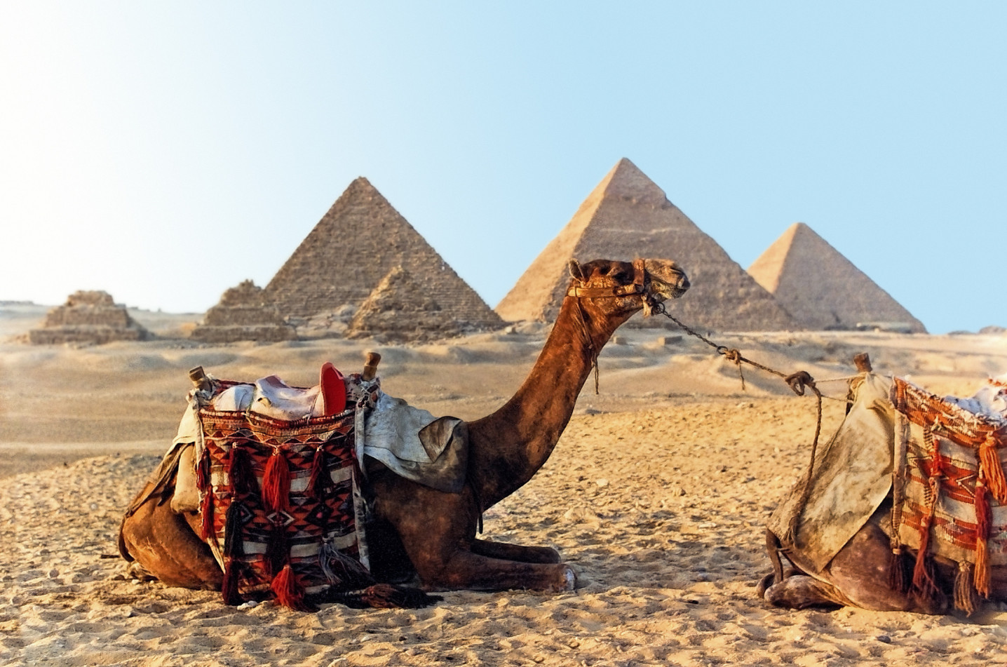 10 Days Cairo Nile Cruise Alexandria tour - 5 stars accommodation