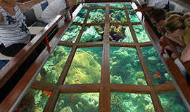 Sharm Glass Bottom Boat